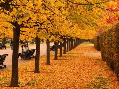 Τα ομορφότερα φθινοπωρινά τοπία στον