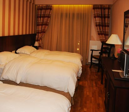 Grand Chalet Hotel